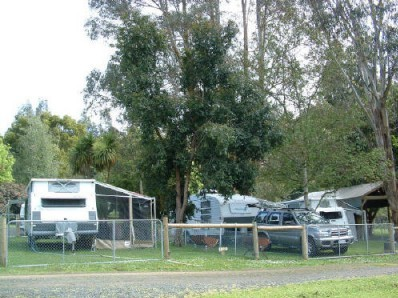 Fenced Caravan Site ( Powered )